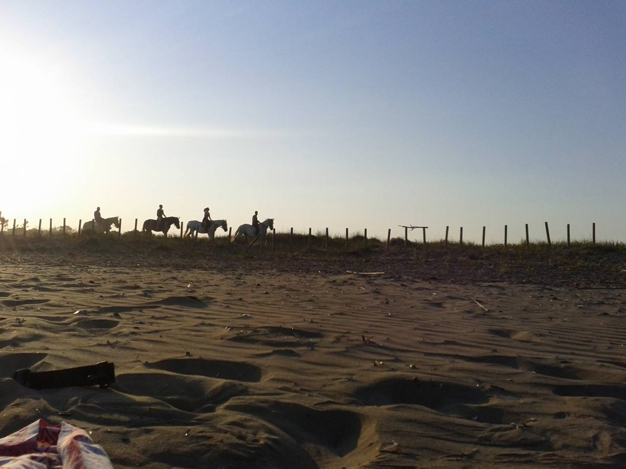 Horse riding in the sant dunes of Laganas