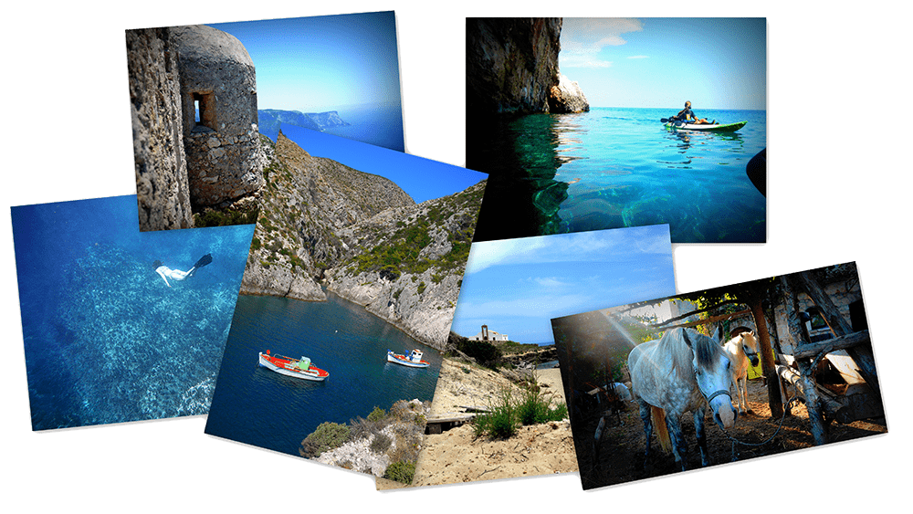 zante image collage